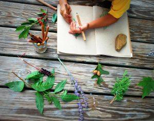 Child drawing leaves - Oak Meadow