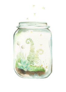 drawn image of a terrarium